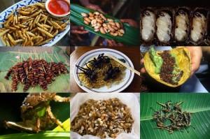 Блюда из насекомых